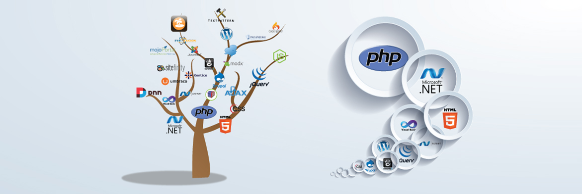 Best Web Development Company In Islamabad, Pakistan